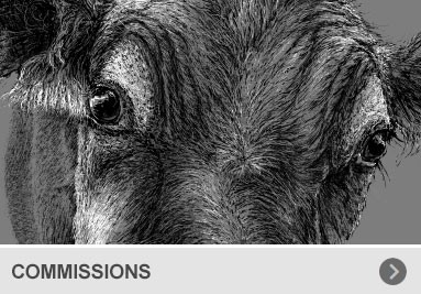 BAND SHIRTS | CUSTOM DESIGNS | COMISSIONAL WORKS - Auftragsarbeiten
